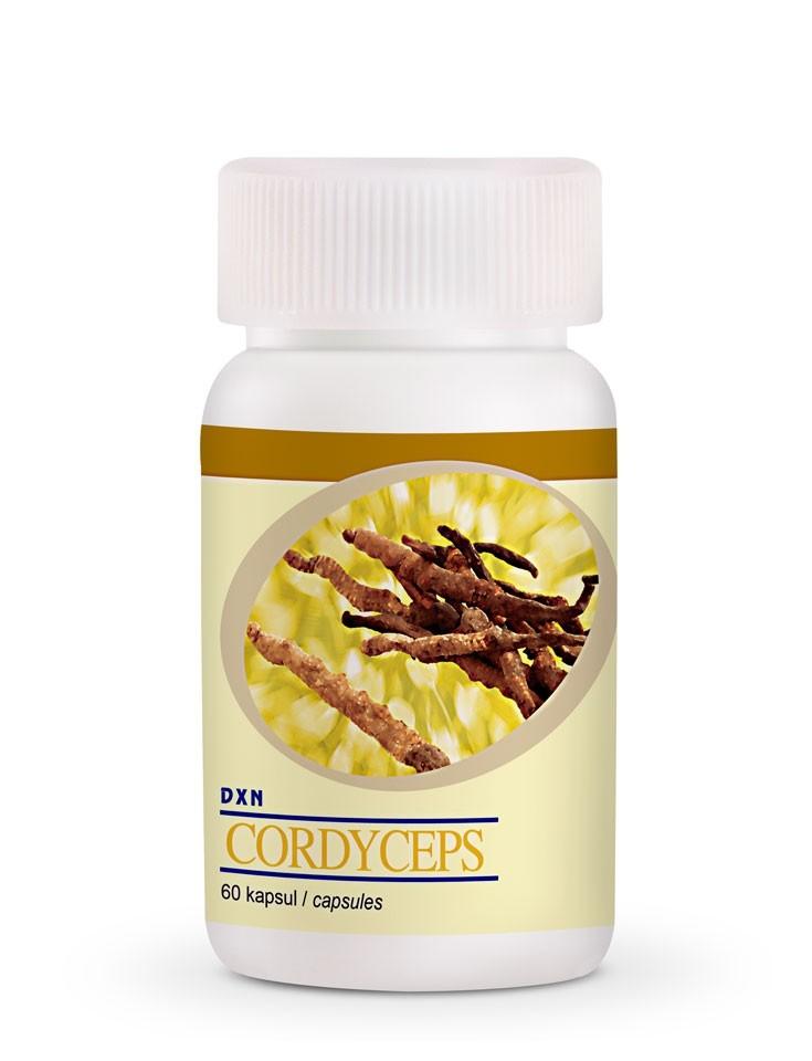 Cordyceps Sinensis cápsulas